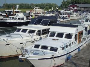 Expert maritime en hollande, expertise vedette hollandaise